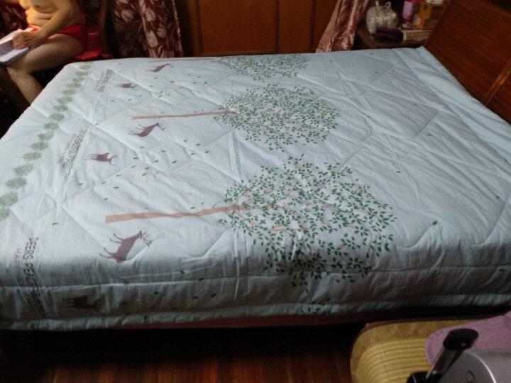 恒源祥家纺 床上用品 纯棉舒适夏凉被子可水洗空调被全棉夏被 探险记(蓝) 200*230cm 晒单图