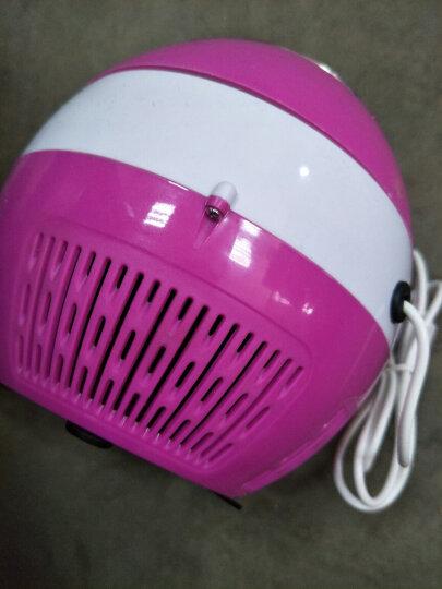 吸入式灭蚊灯 高效节能 孕婴适用 物理家用灭蚊灯驱蚊器 带适配器 黑色 晒单图