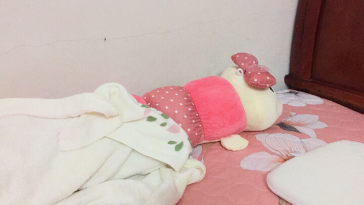 爱贤 可爱卡通毛毛虫毛绒玩具 虫子公仔布娃娃 男朋友抱枕玩偶生日礼物 1.4米花色毛毛虫 晒单图
