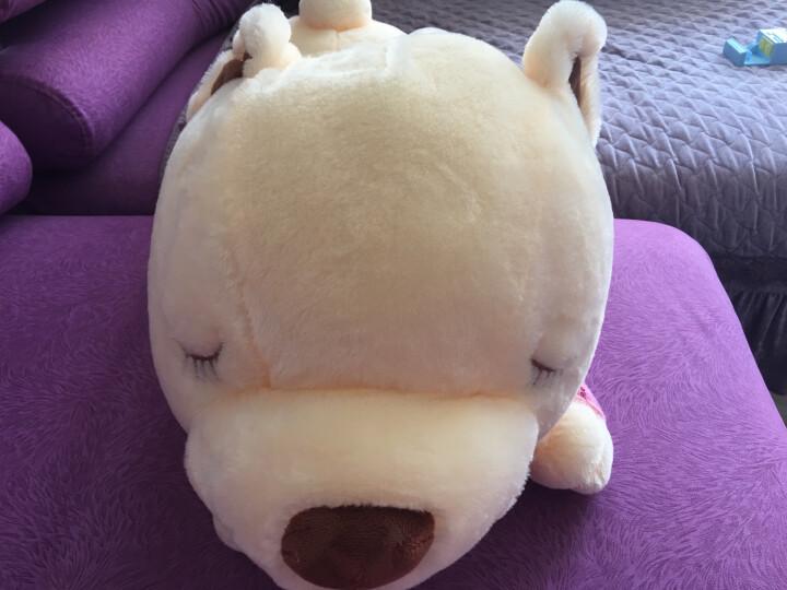 魔法龙 可爱趴趴熊大号泰迪熊公仔抱抱熊毛绒玩具大熊猫布娃娃玩偶睡梦熊狗狗抱枕公仔靠垫 红条纹衣服-趴趴熊 90厘米 晒单图