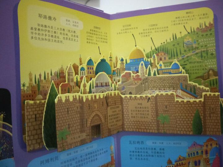 世界名城之旅 晒单图