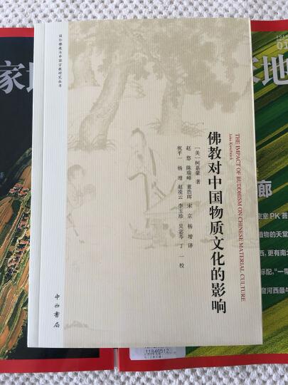 佛教对中国物质文化的影响 晒单图