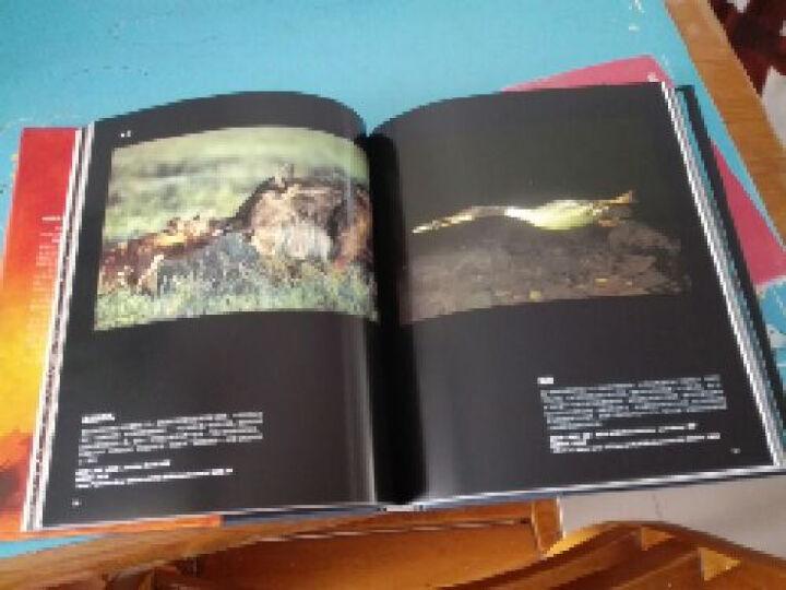 地球之光:BBC野生生物摄影年赛二十年精选 晒单图