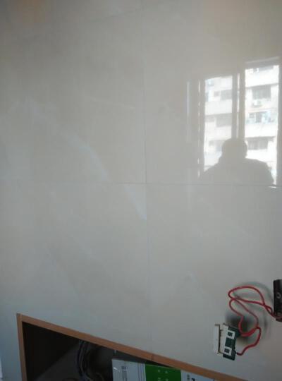 东鹏瓷砖 金玉满堂 厨房卫生间 釉面砖 瓷片墙面砖 亮面砖磁砖墙砖 现代简约 墙砖630ELN53003 300*600 晒单图