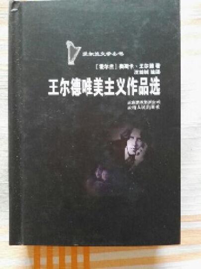 爱尔兰文学丛书:王尔德唯美主义作品选 晒单图