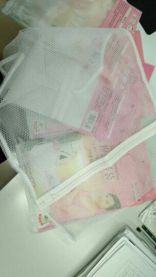 KU-liFe小件衣物护洗袋 内衣袜子洗衣网 洗衣机防护袋 保护衣物勾丝 大号50*70cm 晒单图