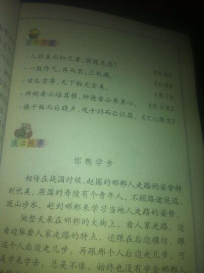 人教版六年级下册语文书课本 小学6六年级语文下册教材教科书 晒单图