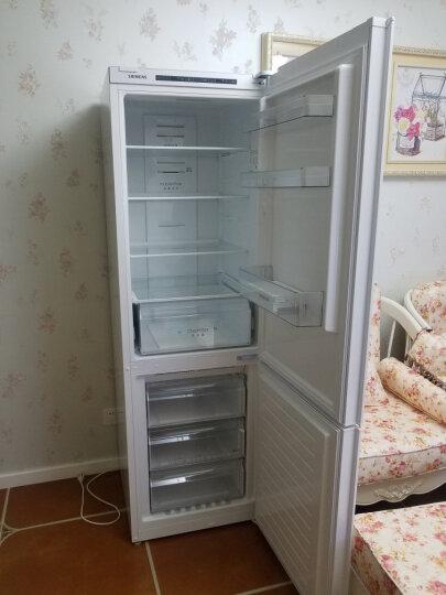 西门子(SIEMENS) 321升 风冷无霜 双门冰箱 电脑温控 LED内显(白色) BCD-321W(KG32NV21EC) 晒单图