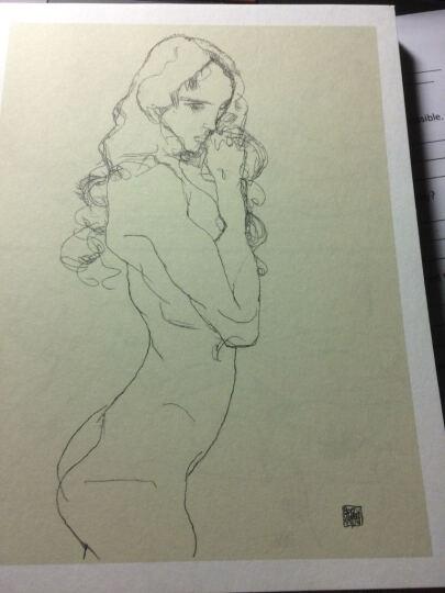 席勒经典素描全集·典藏版:人体卷 晒单图