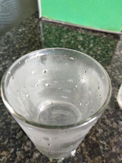 ??【终身质保】water plus沃德加净水器家用水龙头厨房自来水陶瓷过滤器净水机 2机6芯特惠装 晒单图
