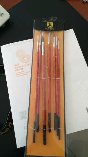 中盛进口尼龙毛勾线笔 700勾边描边笔 油画笔水粉笔水彩笔油彩笔 单支/套装可选 7支全套 晒单图