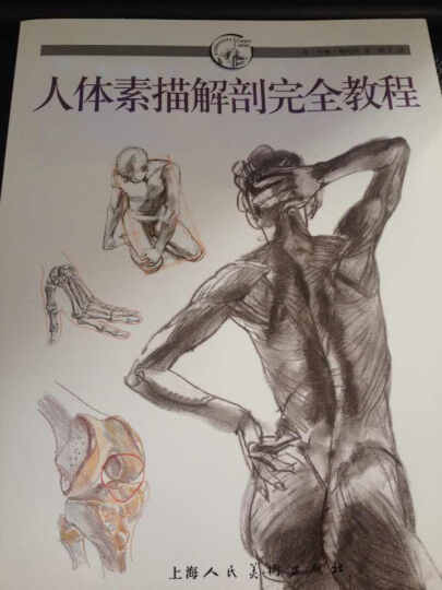 人体素描解剖完全教程 晒单图