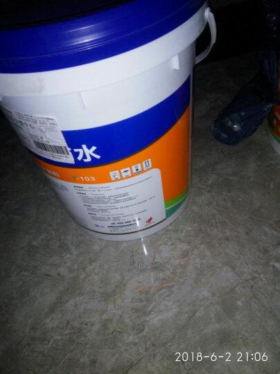 科顺JS高分子复合聚合物防水涂料漆通用地面内外墙彩色K11卫生间厕所厨房水池地下室水泥砂浆毛坯房补漏 绿地T103柔韧抗开裂地面适用 晒单图