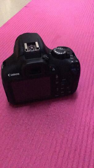 佳能(Canon) 入门/家用数码单反相机  EOS 1500D (18-55/55-250)双头套机 晒单图