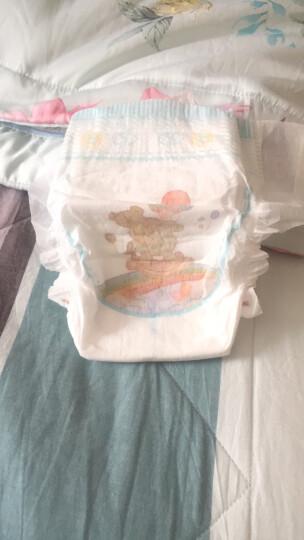 泰迪熊Teddy Bear臻薄透气纸尿裤L80片(9-14公斤)婴儿尿不湿 晒单图