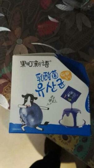 巧妈妈 CLEVERMAMA 乳酸菌布甸果冻(蓝莓味)264g布丁休闲零食 晒单图