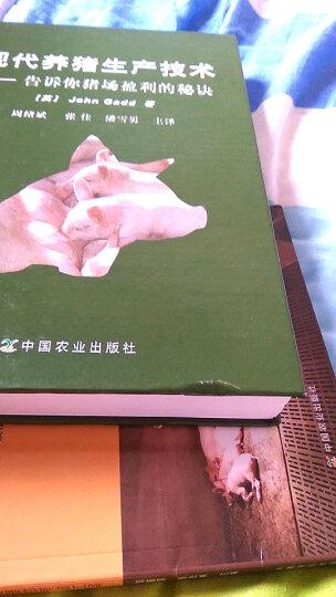 现代养猪生产技术:告诉你猪场盈利的秘诀 晒单图