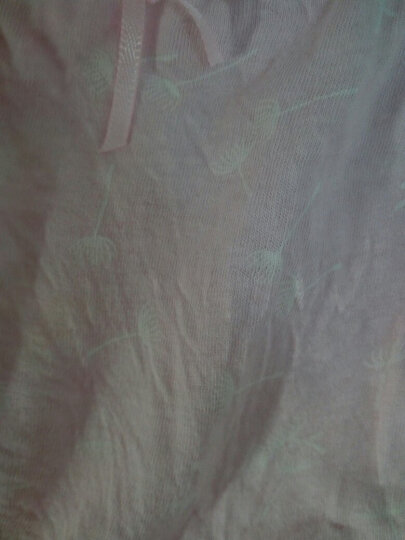 限时秒杀4条价锦依偎女内裤棉质高腰女士内裤棉质中腰三角内裤女4条盒装多款可选 青花瓷4条装 L(165/90) 晒单图