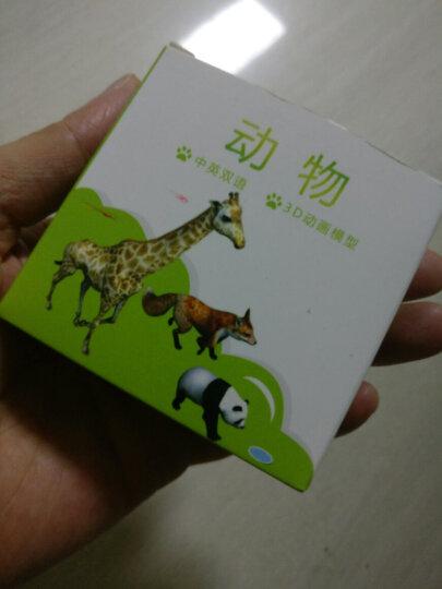 绿之爱口袋动物园 涂涂乐4d认读卡片 AR立体儿童早教看图识字益智魔法仿真模型玩具 花卉3D卡片20张 晒单图