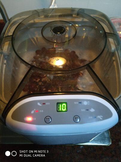 锐智(RUIZHI) 锐智家用洗菜机全自动智能臭氧果蔬清洗机厨房多功能活氧消毒蔬菜净化解毒机 RZ-06A-1升级新款红色 晒单图