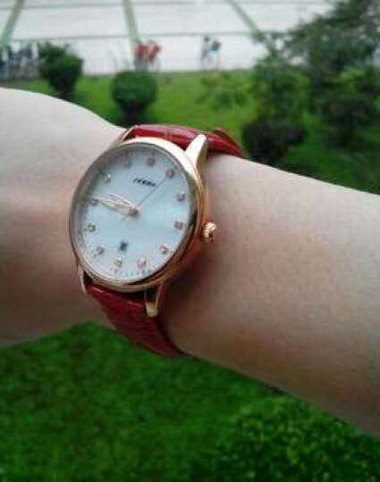 时诺比(Sinobi)手表 女镶钻时尚女士手表皮带情侣防水学生石英腕表 红色玫圈+日历 晒单图