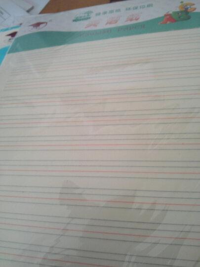 金儿博士信纸信笺纸信稿纸作业草稿纸商务办公学习稿纸文稿纸 400格作文纸 晒单图
