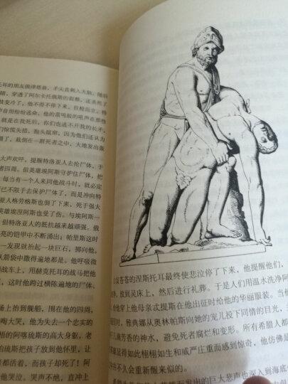 新课标推荐阅读丛书:古希腊神话与传说 晒单图