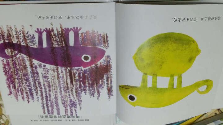 自己的颜色 编绘 少儿 书籍 晒单图