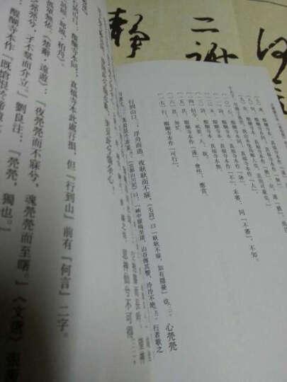 日藏庆安本《游仙窟》校注 晒单图