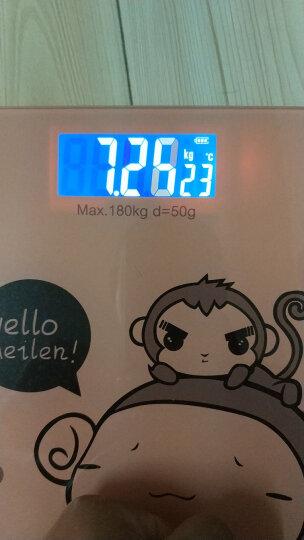 【京东包邮】Meilen电子秤称重人体秤精准电子称健康秤家用计体重秤 飞天萌猴 晒单图