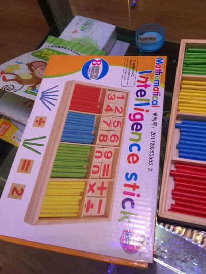 杜曼闪卡 数数棒 幼儿园婴儿童数字棒木质积木玩具 算术棒早教益智1-6岁幼儿升小学 数一数多米诺 晒单图