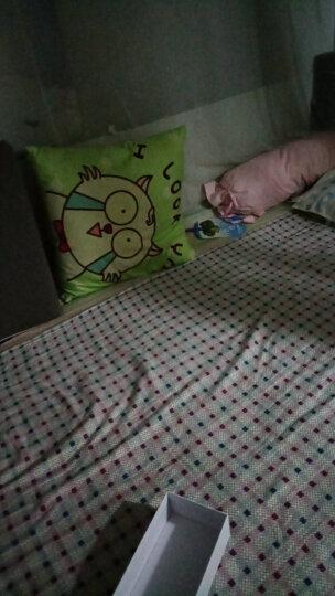 胜伟 套件家纺 全棉印花四件套 纯棉床单被罩 时光之梦1.5/1.8米床通用 被套200*230cm 晒单图