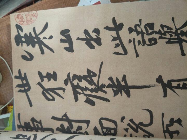 中国历代书法墨迹珍品原色放大系列:黄庭坚《寒山诗帖》 晒单图