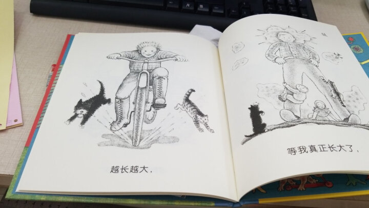 奇想国大师名著:多莱尔作品·长大了 晒单图