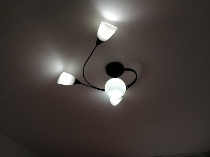健康民居led灯卧室灯客厅灯简约 美式北欧创意餐厅灯具吸顶吊灯饰组合套餐 喇叭款 3+1头+led灯泡 白光 晒单图