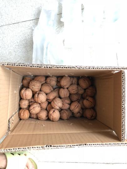 风尚鲜生 北京密云本地新鲜去青皮核桃 新鲜水果 500g 晒单图
