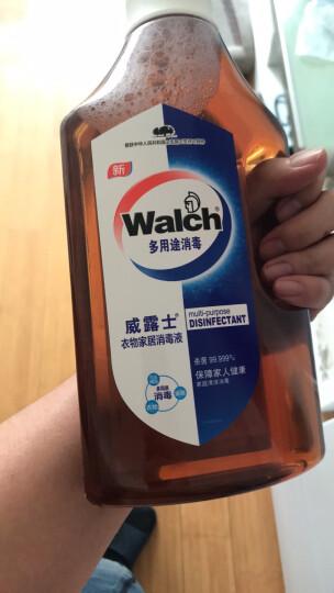 威露士(Walch) 衣物家居消毒液 1L 家居衣物除菌液 晒单图