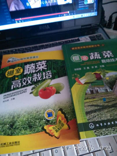 区域包邮 棚室蔬菜栽培技术大全+高效种植致富直通车 棚室蔬菜高效栽培   2本 晒单图