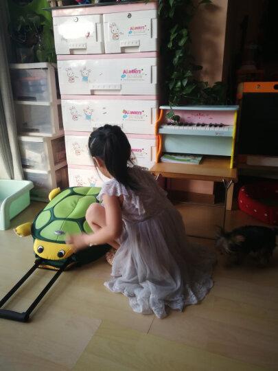 新秀丽(Samsonite) SAMMIES DREAMS 儿童卡通拉杆箱男女童登机旅行箱(海龟) U22*14081 深绿18寸 晒单图