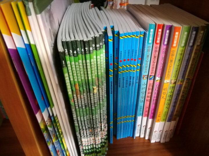 森林报故事绘本 全12册 彩图注音版 3-12岁儿童绘本故事书 森林报 小学生课外阅读书籍 晒单图