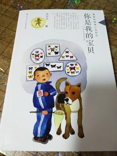 黄蓓佳倾情小说系列:你是我的宝贝 晒单图