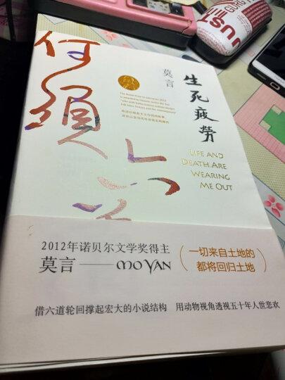 灵魂之旅:中国当代文学的生存意境(精装) 晒单图