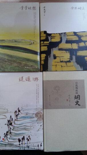 林清玄小语 下册:心有沉香,不畏浮世(老树绘) 晒单图