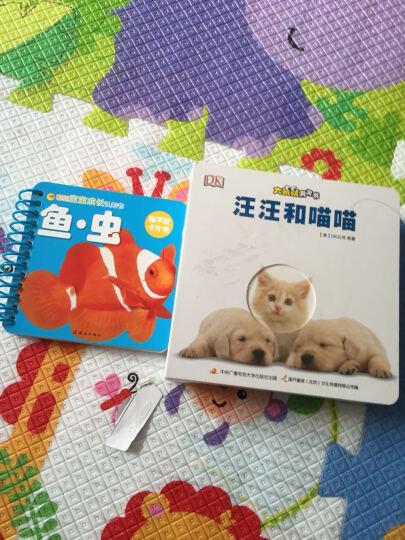 聪明宝宝成长认知书:鱼·虫 晒单图