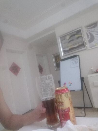 帕莎帕琦(Pasabahce)啤酒杯 土耳其进口水杯 果汁杯 玻璃杯一支 品股啤酒杯320ML 晒单图