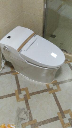 美标 自动一体智能坐便器马桶连体遥控坐厕豪华电动马桶雅乐5392/5392 雅乐5392(独立控制面板) 300坑距 晒单图