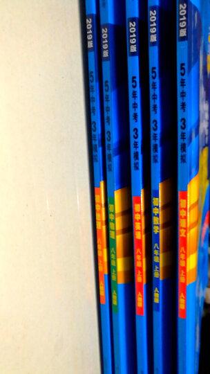 曲一线官方正品2020版53初中同步练习册八年级上册语文人教部编版 5年中考3年模拟同步课本训练册 晒单图