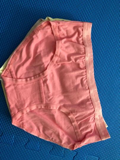 恒源祥内裤女纯棉性感中腰短裤三角裤女士蕾丝小平角 G0213 160/85(M) 晒单图