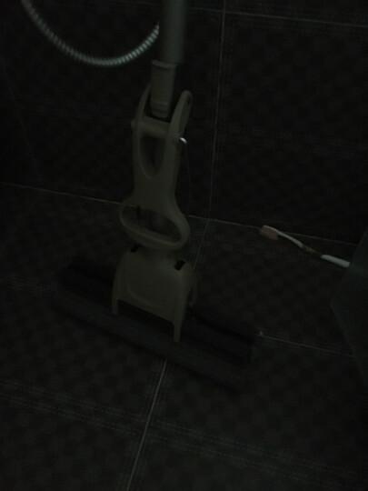 家杰 滚轮式胶棉拖把 海绵吸水地拖拖布 免手洗墩布 清洁工具 27cm 送1胶棉头 JJ-JM06 晒单图