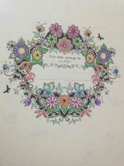 木棉花铅笔画法-时间旅行 有故事的涂色减压书 秘密花园 魔法森林 附带48色马可专业铅